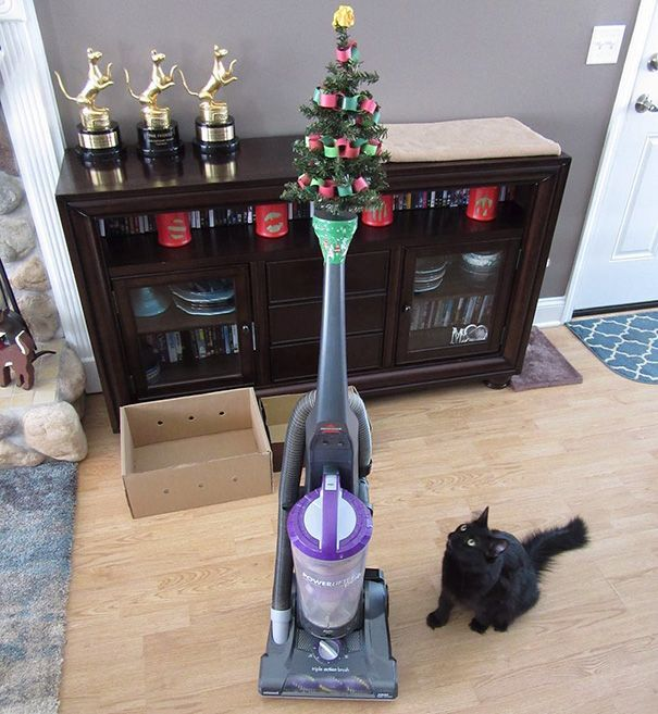 Μαύρη γάτα κοιτάει ένα μικρό χριστουγεννιάτικο δέντρο που είναι πάνω σε μια ηλεκτρική σκούπα